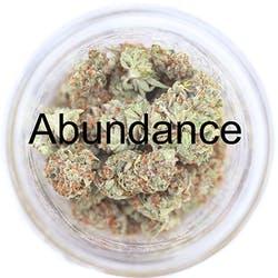 Abundance Caregivers - Westbrook