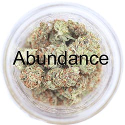 Abundance Caregivers - Portland