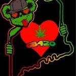 Greenbear Greencare