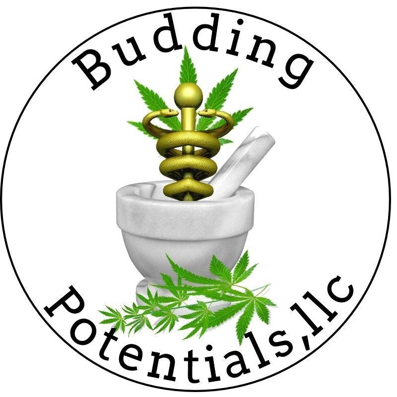 Budding Potentials, LLC – Online & Mobile Certifications